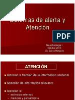 Margulis Sistemas de Alerta Atencion