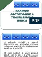 Zoonosi Protozoarie a Trasmissione Idrica Def