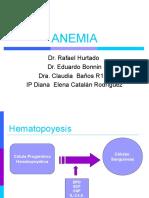20100611_anemia_2010