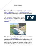 Water Pollution.docx