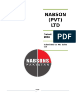 Final SDM Report (Nabsons)