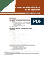 Cap._2_Bases_neuroanato_micas_Cognicio_n.pdf
