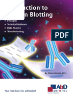 Western Blotting Brochure