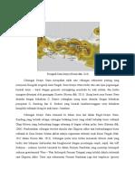 Tektonik Dan Struktur Cekungan Serayu Utara NEW