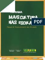 Manualdesenvolvimento Maisculturanasescolas Periodo Eleitoral 03-11 (2)