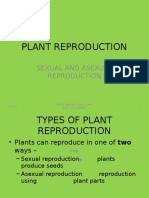 plant reproduction - sexual and asexual  worksheet for form 5