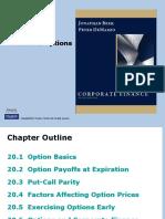 Berk Chapter20 Financial Optioins 111029180209 Phpapp01