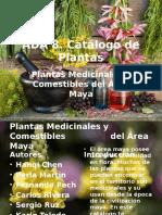 Catálogos de Plantas Medicinales del Área Maya