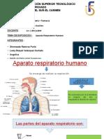 Aparato respiratorio humano.pptx
