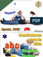 Curso Primeros Auxilios Maniobras Respiracion Fluidos Hemorragias Shock Conciencia Heridas Quemaduras