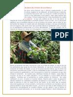 Ensayo de Los Problemas Del Estado de Guatemala