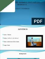 Levitico_Numeros II.ppt