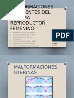 Malformaciones Del Aparato Reproductor Femenino