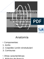 Pathology of the Aortic Valve