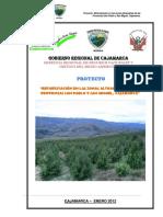 PROYECTO REFORESTACION.pdf