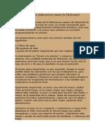 Manual de Elaboracion Casera de Hidromiel