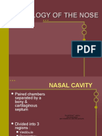 Histology of the Nose