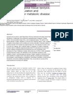 Dissecting Adipose Tissue Lipolysis