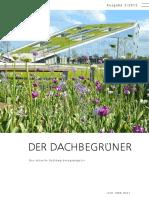 Der Dachbegruener - green roofs