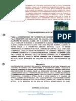 Estudio Hidrologico e Hidraulico2