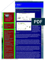 Info MALUKU_ Eksploitasi Emas Wetar Hingga LNG Masela, Elegi Warga Maluku Barat Daya