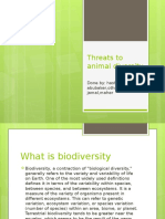 threats to animal diversity