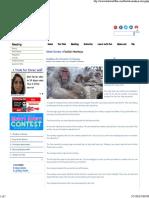 Moral Stories for Kids – Foolish Monkeys