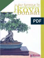 LA NATURALEZA DE DAR FORMA ZELKOVA BONSAI.pdf