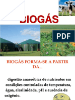 Biogas -