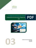 Informe 03 USI Propuestas Organizacion USI