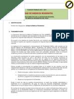 Plan de Trabajo 2010 Anmrp(1)