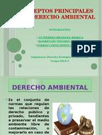 Conceptos Principales Del Derecho Ambiental
