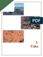 Toka  2013 gjeollogjika