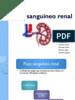 Flujo_renal_1_.pdf