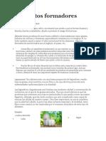 Alimentos Formadores, Reguladores y Energéticos