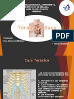 torax cardiaco1.pptx