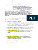 PASOS PPAP ESPAÑOL.docx