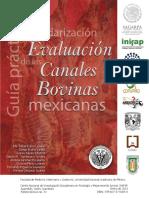 Guía práctica para la estandarización y evaluación de las canales bovinas..pdf