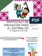 Protocolos de Irrigación