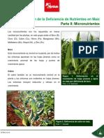 Caracterización de La Deficiencia de Nutrientes 2