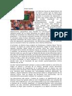 Historia de Los Idiomas Mayas