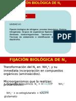 6-fijacion-biologica-de-nitrogeno.pptx