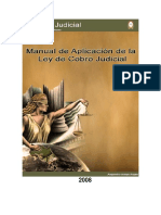 Manual Procesos Cobratorios Alejandro Araya 2008