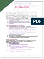Inflamación Aguda y Crónica, AP, BCEH. Borrador