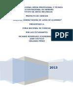 Proyecto+IAM+Feria+2013+Final+A