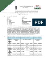Unidad Didactica (Velasco Pucapampa)