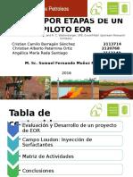 Diapositivas-De-recobro- Seminario Diseño de Una Prueba Piloto (2)