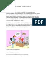 Manual de La Diarrea Cultural
