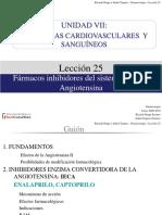 Leccion25.Renina Angiotensina (2)