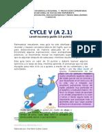 Ciclo v Level Recovery (Alba Paredes)
